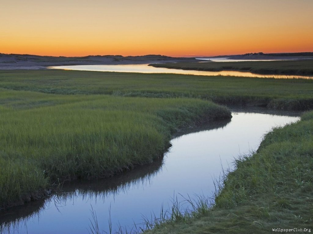 photo of a channel cutting through a saltwater marsh