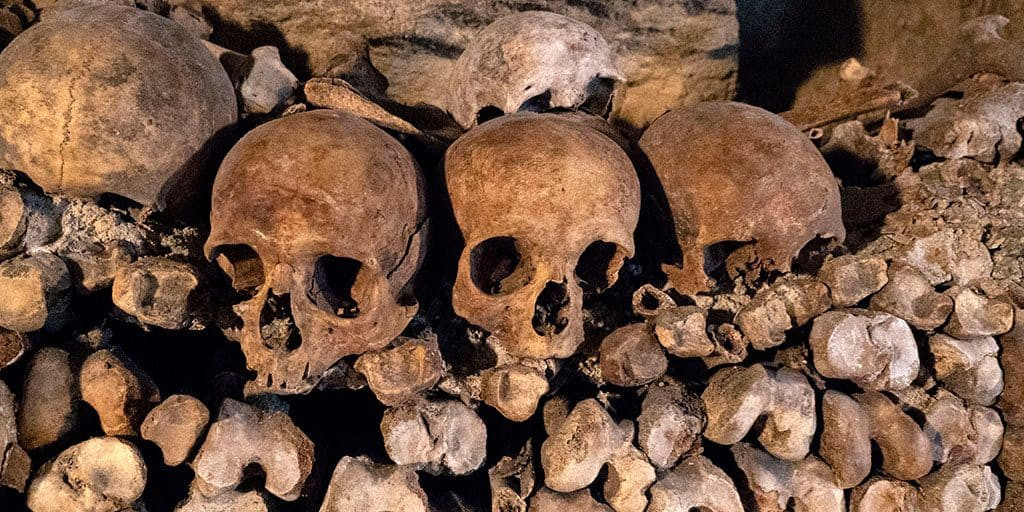 Image of skulls and bones in the wall of the Paris catacombs