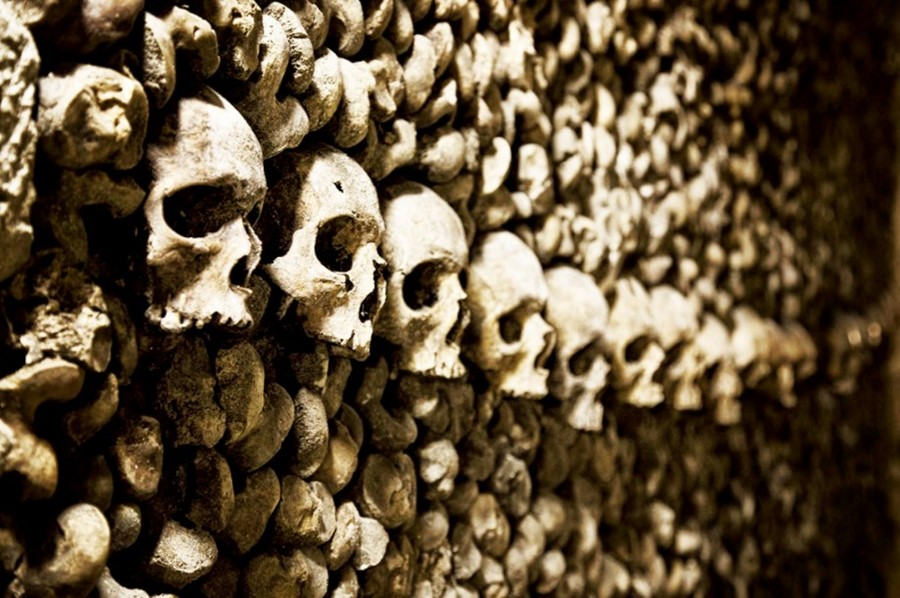 Picture of skulls lining the wall of the Paris catacombs